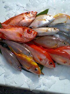奄美大島新鮮、安全、美味