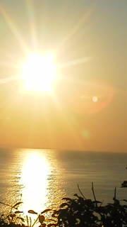 奄美大島気持ちのいい朝