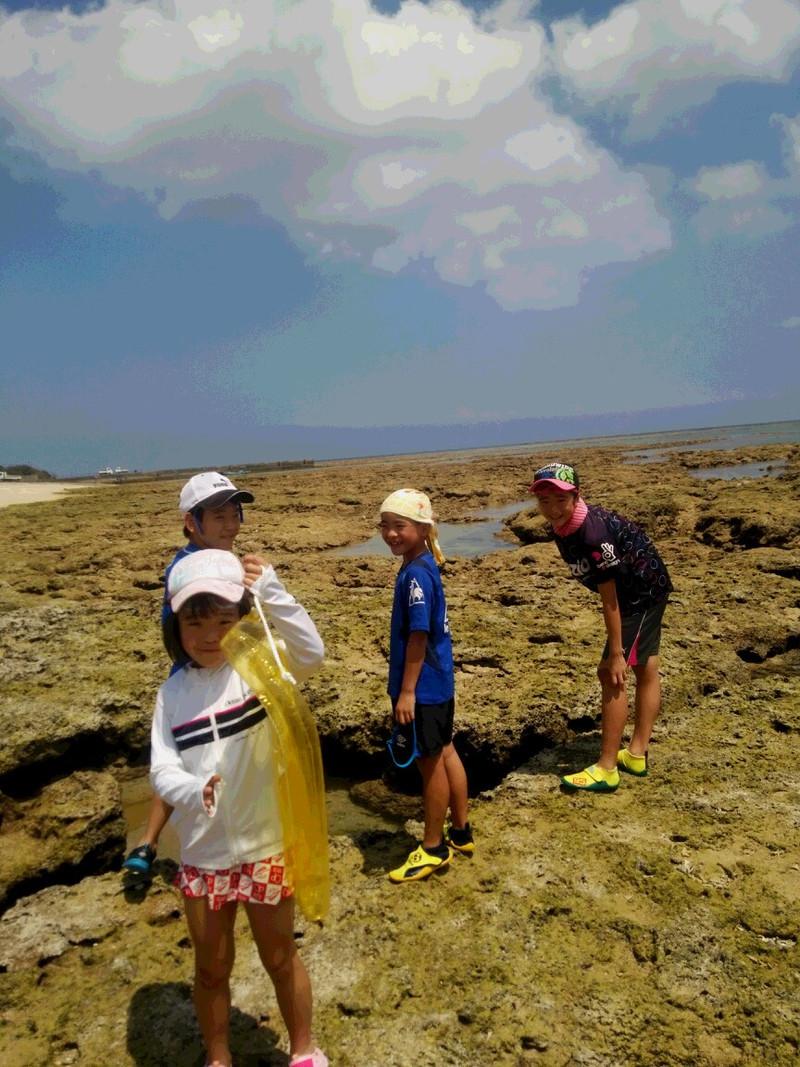 奄美大島夏真っ盛り